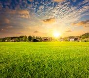Landschaftswiesenfeld auf Sonnenuntergang Stockbilder