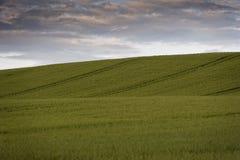 Landschaftswolken Lizenzfreie Stockfotos