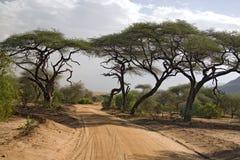 Landschap 005 van Afrika Stock Foto's