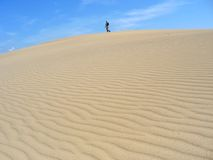 Landschap 02 van Taiga deser Royalty-vrije Stock Foto
