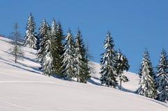 Landschap 1 van de winter stock afbeeldingen