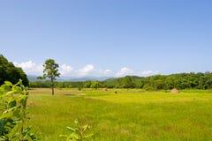 Landschap. Stock Foto's