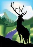 Landschap. vector illustratie