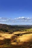 Landschap 2 van de vallei Stock Foto's