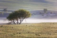 landschap Royalty-vrije Stock Afbeeldingen