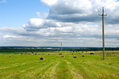 Landschap Stock Foto
