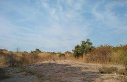 Landschap Stock Fotografie