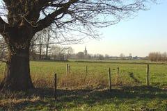 Landschap Royalty-vrije Stock Foto's
