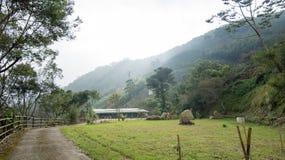 Landschap in alishan mountian Stock Afbeelding