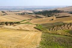 Landschap in Basilicata (Italië) bij de zomer stock fotografie