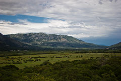 Landschap bergen, vallei, bos Stock Foto