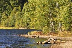 Landschap bij het meer in daglicht Stock Afbeelding