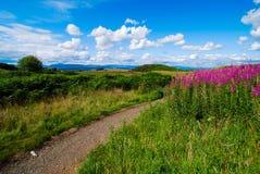 Landschap bij Koninginnen View in Schotland Stock Foto's