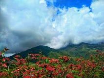 Landschap bij Kundasang-dorp, Ranau in Sabah, Maleisië stock afbeelding