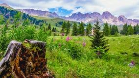 Landschap bij San Pellegrino Pass 1918 m in Italiaanse Dol Royalty-vrije Stock Fotografie