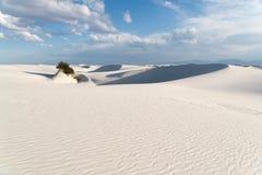 Landschap bij Wit Zand Nationaal Monument in Alamogordo, New Mexico Royalty-vrije Stock Fotografie