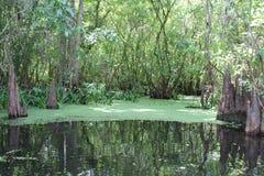 Landschap binnen rivier Royalty-vrije Stock Foto