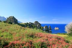 Landschap, Blauwe Mediterraneo Stock Afbeelding