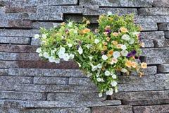 Landschap Bloemen in steen Royalty-vrije Stock Foto