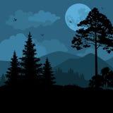 Landschap, bomen, maan en bergen Stock Foto's