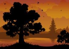 Landschap, bomen, rivier en vogels Royalty-vrije Stock Fotografie