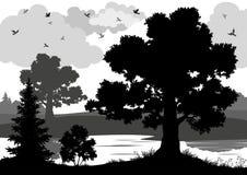Landschap, bomen, rivier en vogelssilhouet Royalty-vrije Stock Fotografie