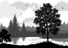 Landschap, bomen, rivier en vogelssilhouet Royalty-vrije Stock Foto