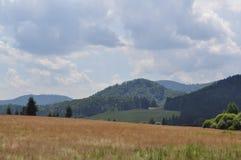 Landschap Brezno Royalty-vrije Stock Fotografie