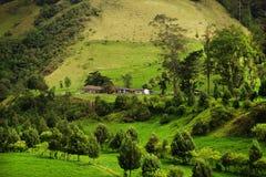 Landschap in Buenavista, Quindio bij zonsondergang stock fotografie