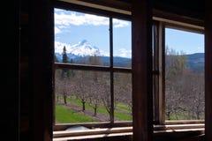 Landschap buiten het venster van oud huis Stock Foto's
