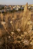 Landschap in Cappadocia, Turkije stock foto's
