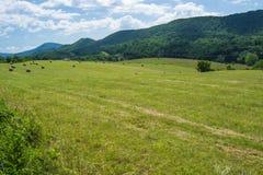 Landschap - Catawba-Vallei stock afbeeldingen