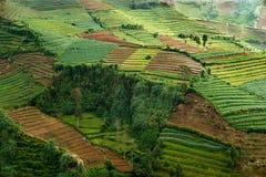 Landschap Centraal Java, Indonesië royalty-vrije stock afbeeldingen