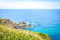 Landschap in Cornwall, Engeland stock foto