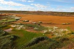 Landschap dat met het residu van de kopermijnbouw wordt aangetast Stock Foto