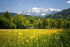 Landschap in de Beierse Alpen Stock Afbeeldingen