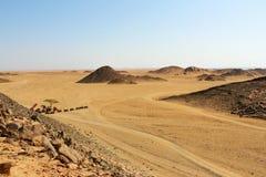 Landschap in de bergen Stock Foto
