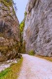 Landschap in de bergen van de passage van Transsylvanië Stock Foto's