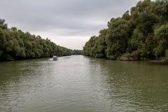 Landschap in de Delta van Donau, Roemenië, Europa stock foto's