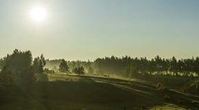 Landschap, de lenteochtend, mist in de weide stock fotografie