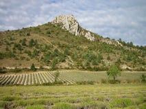 Landschap in de Provence Stock Afbeelding