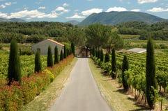 Landschap in de Provence, Frankrijk Stock Foto