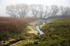 Landschap in de recente herfst Royalty-vrije Stock Afbeeldingen