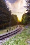 Landschap de spoorweg die door het bos stijgen Royalty-vrije Stock Fotografie