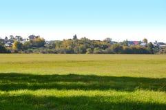 Landschap de vroege herfst Open plek met geel gras en bladeren op de achtergrond van het bosje van de de herfstberk in het afstan Royalty-vrije Stock Afbeeldingen