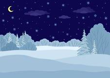 Landschap, de winter bosnacht Stock Afbeelding