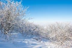Landschap in de winter, Deogyusan in Korea Stock Afbeeldingen
