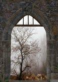 Landschap in de winter door oud venster Royalty-vrije Stock Foto