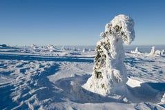 Landschap - de winterbergen stock foto