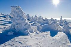 Landschap - de winterbergen stock foto's